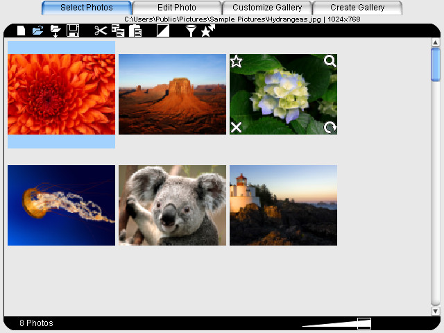 Photo Selection Thumbnails
