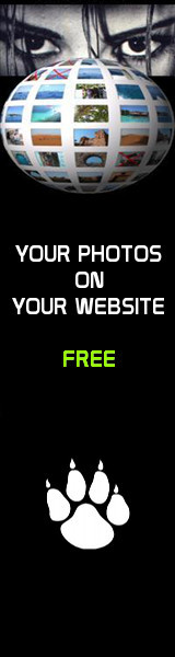 Photo Website